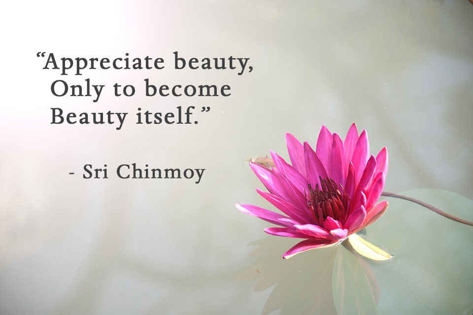 appreciate-beauty
