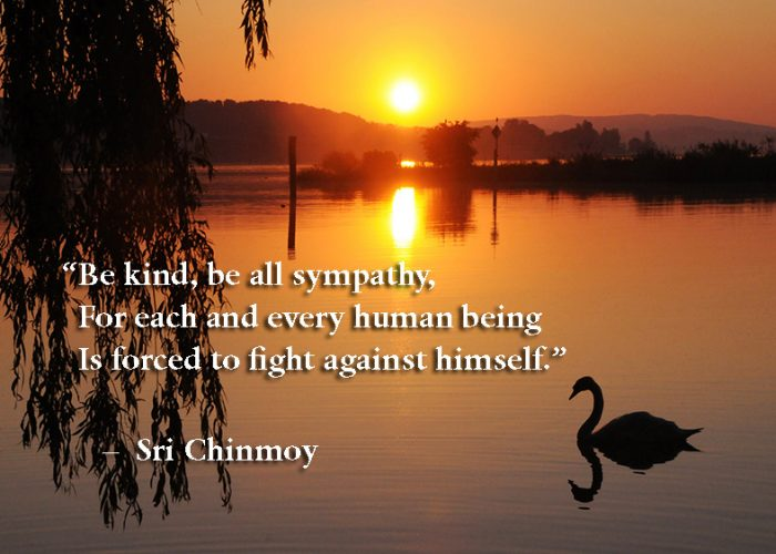 Be kind be all sympathy
