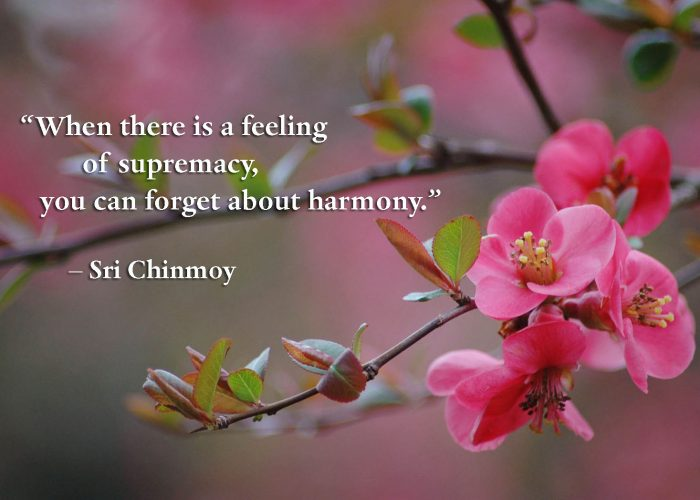 feeling-supremacy-harmony