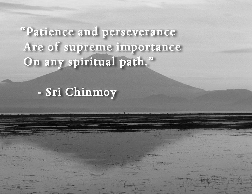 patience-perseverance