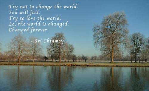 try-not-to-change-the-world